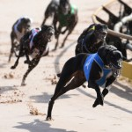 Warrnambool Trial Amendments Tuesday 29th November