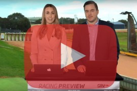 2018 Group Two Warrnambool Cup preview
