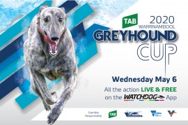 No crowds but huge coverage for greyhound racing's 2020 TAB Warrnambool Cup