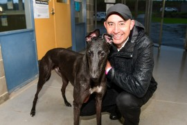 Thompson chases fifth Warrnambool Cup